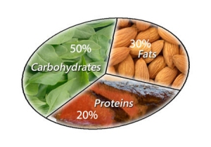 http://weightlossandme.com/macronutrients-affect-workout/
