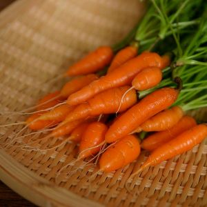 600px-Baby_Carrots_2