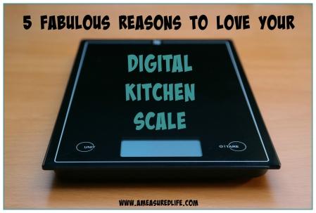digital_scale_main