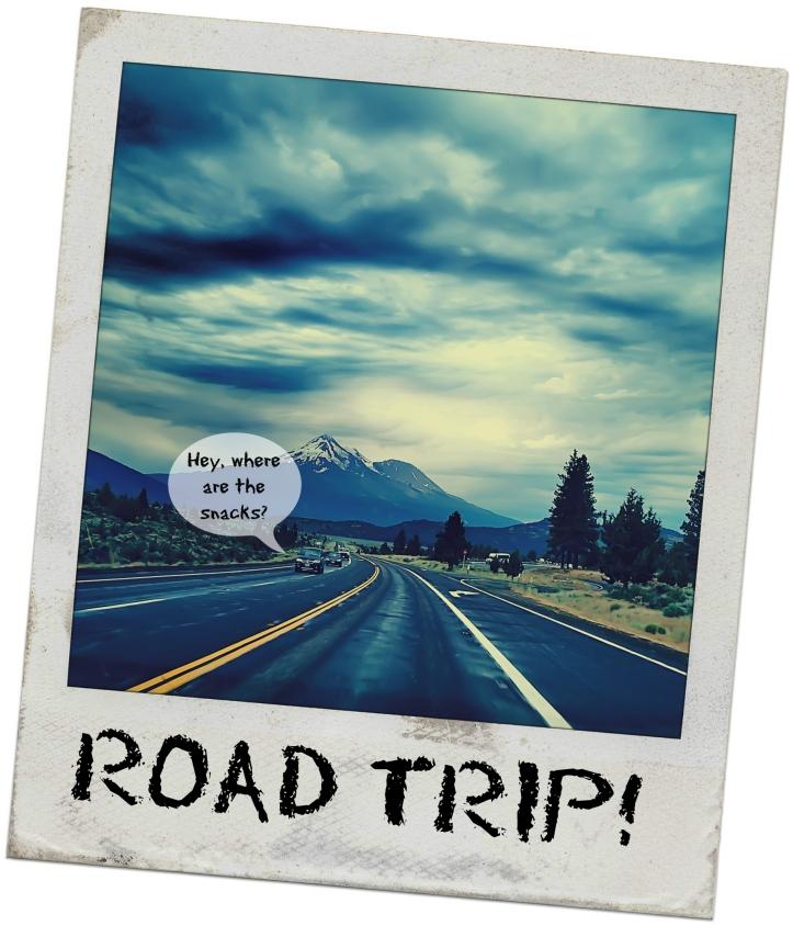road-trip-shit