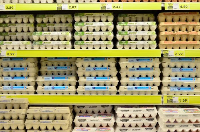 egg-1316407_1280